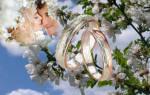 Благоприятные дни для брака в мае. Один раз в год сады цветут — и это отличный повод сыграть свадьбу в мае