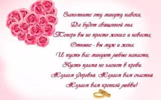 Свадебное поздравление папы для дочери. Пожелания отца на свадьбе дочери своими словами. Поздравление на свадьбу от папы дочери
