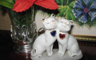 Что означает 20 лет свадьбы. Как отметить фарфоровую свадьбу? Фарфоровая свадьба: праздничные традиции и обычаи