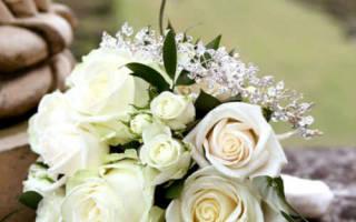 Расписаться в мае приметы. Свадьба в мае — что говорят приметы. Майские приметы — миф или реальность