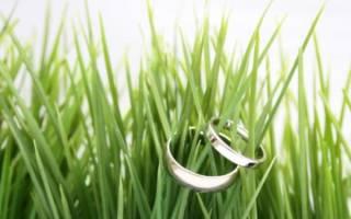 Поздравления с днем свадьбы 1 месяц совместной. Зеленая свадьба. Годовщины по месяцам после дня свадьбы