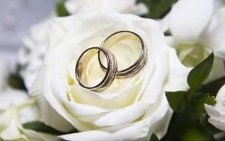 Оригинальные конкурсы для выкупа невесты. Смешные и необычные варианты. Вопросы на свадьбу невесте: перечень вопросов о женихе, вопросы молодоженам