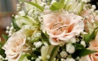 Номинации для награждения на свадьбу самые интересные. Сборник свадебных конкурсов для гостей. Свадебный конкурс Семейные трусы»»