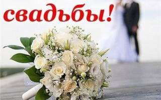 Поздравление с 1 месяцем свадьбы открытки. Поздравления на Зеленую свадьбу (первый день)