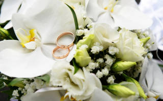 Поздравление с годовщиной свадьбы 2 года. Бумажная свадьба (2 года) — какая свадьба, поздравления, стихи, проза, смс