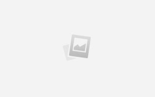 Поздравить со свадьбой прикольно с овощами. Шуточные поздравления на свадьбу с вручением подарков молодоженам